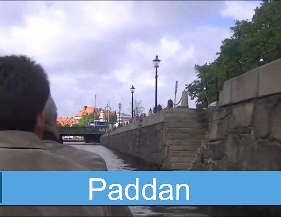 Paddan