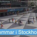 Sommarbilder från Stockholm